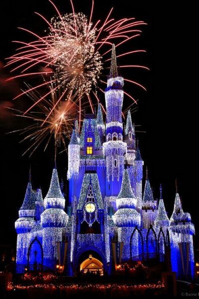 Disney World- The Most Magical Place On Earth!