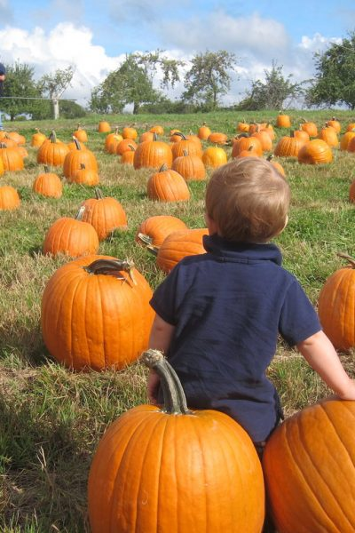 5 Outdoor Activities For Fall