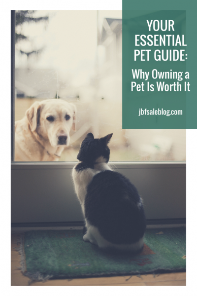 Your Essential Pet Guide: Why Owning a Pet is Worth It